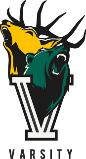 Varsity-Logo-Colour-not-date-2017