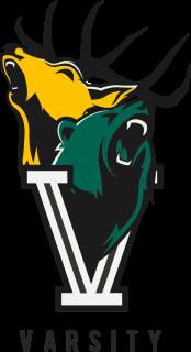 Varsity-Logo-Colour-not-date-2017